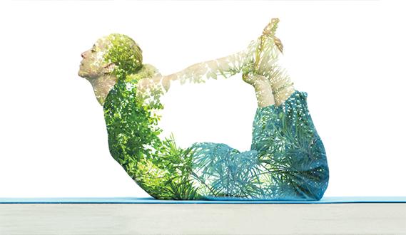 Terapia Ocupacional y la Yoga
