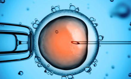 Las células madre dan vida