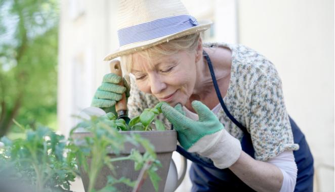 Beneficios de la jardinería para la artritis