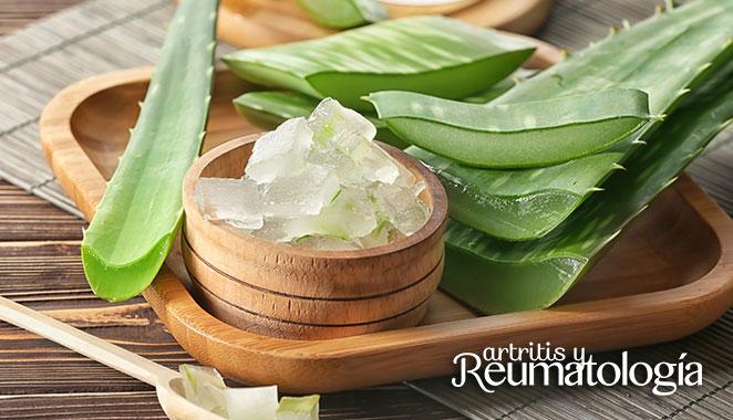 Aloe vera: la planta milagrosa