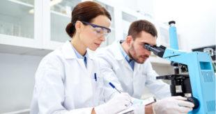 Descubren la forma en la que actúa el sistema inmunológico