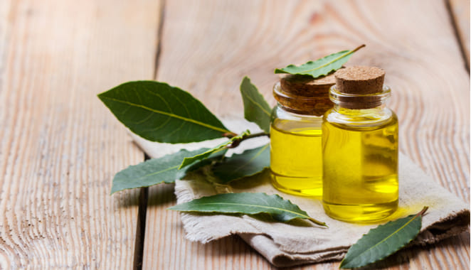 Bondades del laurel para enfermedades reumáticas
