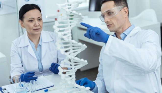 La genética aumenta el riesgo de desarrollar enfermedades autoinmunes