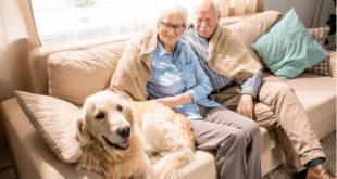 Las mascotas ayudan a sobrellevar problemas de salud