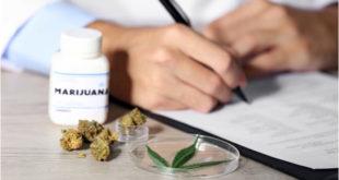 El cannabis reduce el dolor crónico, pero podría provocar lesiones