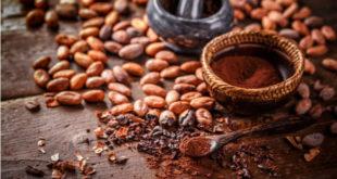 5 beneficios del cacao para tu salud
