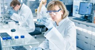 Recientes hallazgos permitirían crear nuevos tratamientos para la enfermedad de Lyme