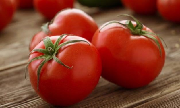 El tomate: beneficios y propiedades para la salud
