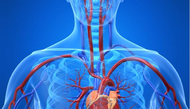 Psoriasis podría incidir en el padecimiento de enfermedades cardiovasculares