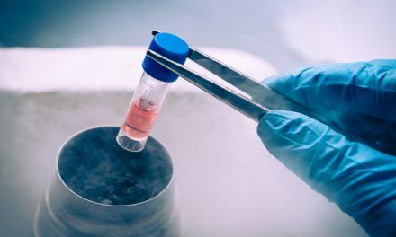 Diferencias entre el plasma rico en plaquetas y células madre: técnicas regenerativas del cartílago