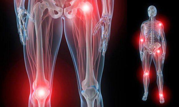 La anatomía de una articulación