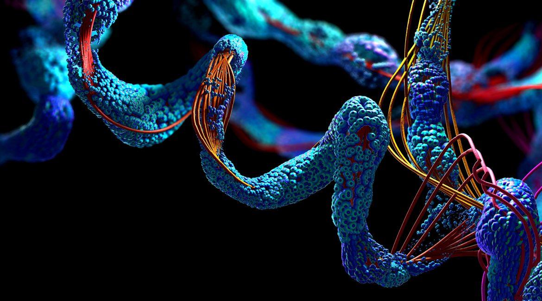 Una proteína modificada reduce síntomas de la artritis reumatoide